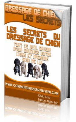 comment dresser mon chien m thode de dressage de chiens. Black Bedroom Furniture Sets. Home Design Ideas